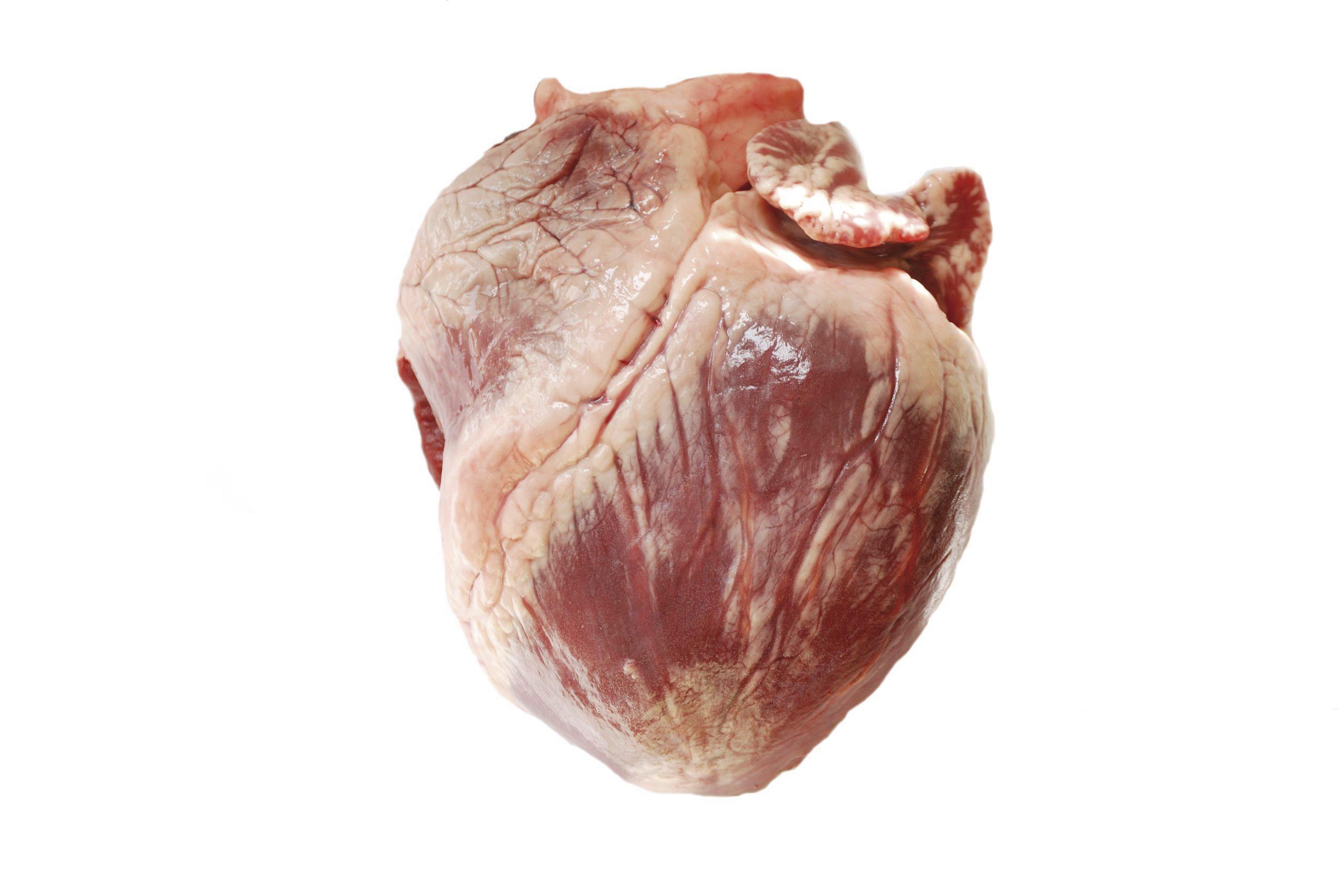 Bravčové srdce